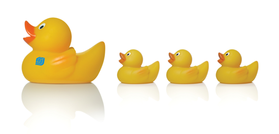Keys to a successful escrow closing - have your ducks in a row